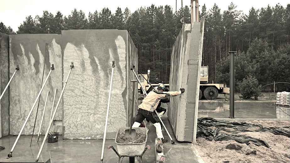 Budowa-Atrialny01